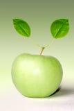 Apple και στηθοσκόπιο Στοκ εικόνα με δικαίωμα ελεύθερης χρήσης