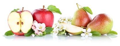 Apple και φρούτα αχλαδιών μήλων αχλαδιών που απομονώνονται στο λευκό Στοκ εικόνες με δικαίωμα ελεύθερης χρήσης