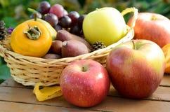 Apple και φρούτα φθινοπώρου σε ένα καλάθι Στοκ Εικόνες