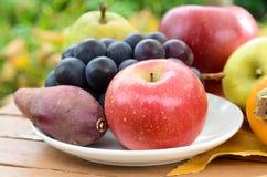 Apple και φρούτα φθινοπώρου Στοκ εικόνες με δικαίωμα ελεύθερης χρήσης