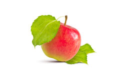 Apple και φύλλα Στοκ φωτογραφίες με δικαίωμα ελεύθερης χρήσης
