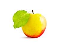 Apple και φύλλα Στοκ Εικόνες