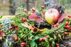 Apple και rosehip ζωή φθινοπώρου ακόμα Στοκ εικόνες με δικαίωμα ελεύθερης χρήσης