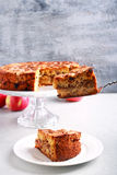 Apple, κανέλα, σταφίδα και κέικ καρυδιών με το κάλυμμα θίχουλων Στοκ φωτογραφίες με δικαίωμα ελεύθερης χρήσης