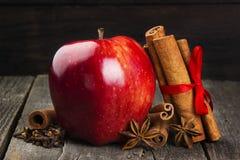 Apple, κανέλα, anisetree σε ένα σκοτεινό ξύλινο υπόβαθρο τονισμός Στοκ φωτογραφίες με δικαίωμα ελεύθερης χρήσης
