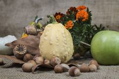 Apple, κολοκύθα, φουντούκι, παπαρούνα και tagetes λουλούδια εν πλω Στοκ φωτογραφία με δικαίωμα ελεύθερης χρήσης