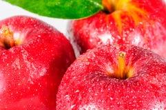 Apple, κόκκινο μήλο κινηματογραφήσεων σε πρώτο πλάνο Στοκ εικόνα με δικαίωμα ελεύθερης χρήσης