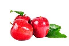 Apple, κόκκινο μήλο Στοκ εικόνα με δικαίωμα ελεύθερης χρήσης
