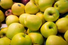 Apple μακρο Φλωρεντία Στοκ εικόνες με δικαίωμα ελεύθερης χρήσης