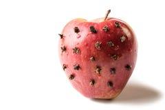 Apple με τα γαρίφαλα Στοκ Φωτογραφίες