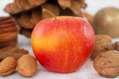 Apple με τα καρύδια Στοκ Φωτογραφία