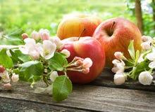 Apple με τα λουλούδια στον ξύλινο πίνακα υπαίθρια Στοκ εικόνα με δικαίωμα ελεύθερης χρήσης