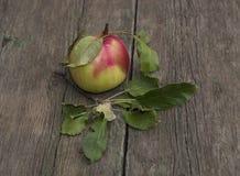 Apple με τα φύλλα σε έναν παλαιό ξύλινο πίνακα Στοκ Εικόνες