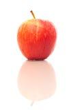 Apple με την αντανάκλαση Στοκ Εικόνα