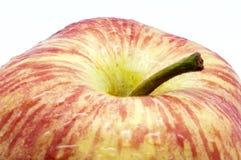 Apple με τις πτώσεις Στοκ Φωτογραφίες