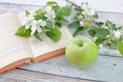 Apple με το βιβλίο άνοιξη Στοκ εικόνες με δικαίωμα ελεύθερης χρήσης