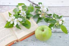 Apple με το βιβλίο κλαδάκι Στοκ Φωτογραφίες