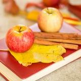 Apple με το βιβλίο και τα ξηρά φύλλα Στοκ εικόνα με δικαίωμα ελεύθερης χρήσης