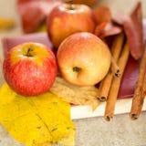 Apple με το βιβλίο και τα ξηρά φύλλα Στοκ Φωτογραφίες