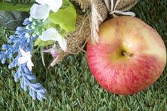 Apple με το λουλούδι στη χλόη Στοκ Φωτογραφίες