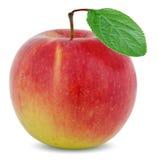 Apple με το πράσινο φύλλο Στοκ Εικόνες