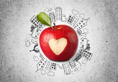 Apple με το χαρασμένο σημάδι καρδιών στο υπόβαθρο σκίτσων Στοκ Φωτογραφίες