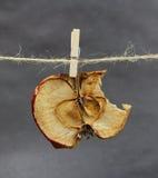 Apple ξηρά που δαγκώνει με ένα clothespeg Στοκ Φωτογραφία