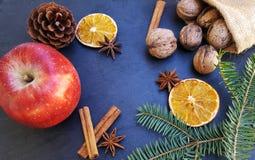 Apple, ξηρές πορτοκαλιές φέτες, ραβδιά κανέλας, ξύλα καρυδιάς και χριστουγεννιάτικο δέντρο Στοκ Φωτογραφίες