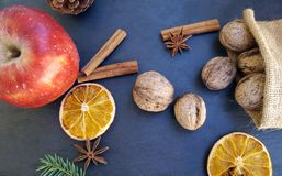 Apple, ξηρές πορτοκαλιές φέτες, ραβδιά κανέλας, ξύλα καρυδιάς και χριστουγεννιάτικο δέντρο Στοκ φωτογραφίες με δικαίωμα ελεύθερης χρήσης