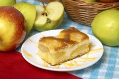 Apple ξινή με το μήλο Στοκ Εικόνες