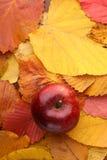 Apple πέρα από τα φύλλα φθινοπώρου Στοκ φωτογραφία με δικαίωμα ελεύθερης χρήσης