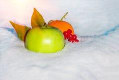 Apple, πορτοκάλι και μούρα του viburnum στο χιόνι Στοκ Φωτογραφίες