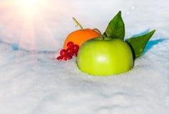 Apple, πορτοκάλι και μούρα του viburnum στο χιόνι Στοκ Εικόνες