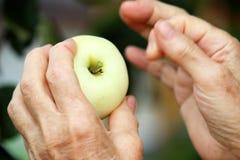 Apple που αναστατώνεται Στοκ Φωτογραφία