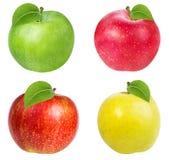 Apple που απομονώνεται στο λευκό Στοκ Εικόνες