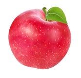 Apple που απομονώνεται στο λευκό Στοκ εικόνες με δικαίωμα ελεύθερης χρήσης