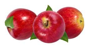Apple που απομονώνεται στο λευκό Στοκ εικόνα με δικαίωμα ελεύθερης χρήσης