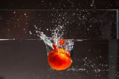 Apple που εμπίπτει στο νερό - βλαστός στούντιο Στοκ φωτογραφία με δικαίωμα ελεύθερης χρήσης