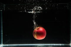 Apple που εμπίπτει στο νερό Στοκ Φωτογραφίες