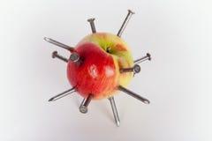 Apple που κολλιέται με τα καρφιά σιδήρου Στοκ φωτογραφία με δικαίωμα ελεύθερης χρήσης