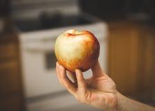 Apple που κρατιέται σε ένα woman& x27 χέρι του s Στοκ Φωτογραφία