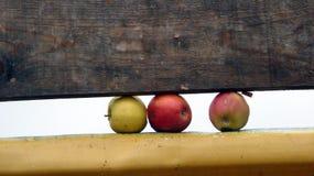 Apple που παγιδεύεται μεταξύ του ξύλινου και μεταλλικού πιάτου Στοκ φωτογραφία με δικαίωμα ελεύθερης χρήσης