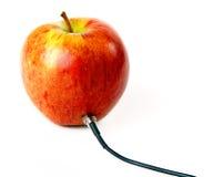 Apple που συνδέεται με το σκοινί Στοκ Φωτογραφία