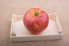 Apple που τοποθετείται στο καφετί υπόβαθρο περίπτωσης Στοκ Εικόνες