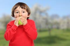 Apple που τρώει τα πράσινα φρούτα παιδιών παιδιών υγιή Στοκ φωτογραφία με δικαίωμα ελεύθερης χρήσης