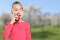 Apple που τρώει το υγιές copyspace φρούτων παιδιών κοριτσιών παιδιών Στοκ εικόνα με δικαίωμα ελεύθερης χρήσης