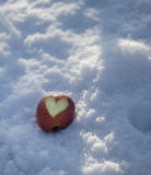 Apple που χαράζεται με τον την καρδιά Στοκ εικόνες με δικαίωμα ελεύθερης χρήσης