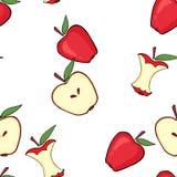 Apple, πυρήνας μήλων, μισό μήλο διανυσματική απεικόνιση
