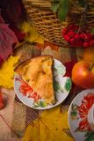 Apple Σαρλόττα σε ένα πιατάκι Στοκ Εικόνες