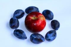 Apple σε έναν κύκλο των δαμάσκηνων - φρούτα Στοκ Εικόνες